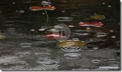 rainingfm2
