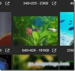 imagefinder5