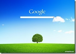 customgoogle7