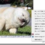 似た画像を検索できるChrome拡張 画像元や大きい画像が見つかる『TinEye Reverse Image Search』