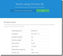 whatbrowser4
