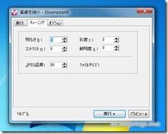 downsizeall11