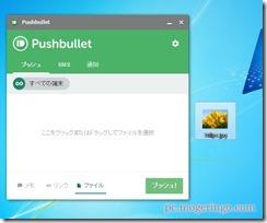 pushbullet12