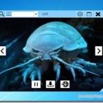 キーワードで画像を検索・スライドショー表示してくれるフリーソフト 『ImageSlider』
