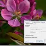 flickrの美しい写真をデスクトップ壁紙に設定してくれるフリーソフト 『Wallpapr』