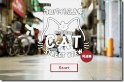 catstreet3