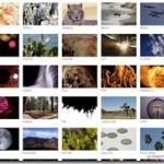 無料で高品質な映像素材をダウンロードできるWebサービス 『FREE 4K STOCK FOOTAGE』