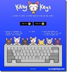 kittykeys1