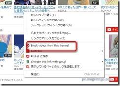 videoblocker4