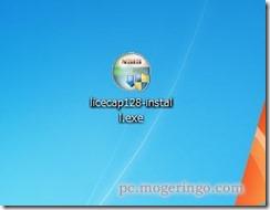 licecap2