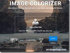 imagecolorizer2