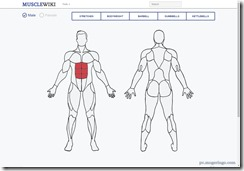 musclewiki1