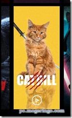 catflix3