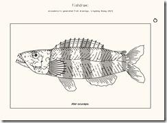 fishdraw2